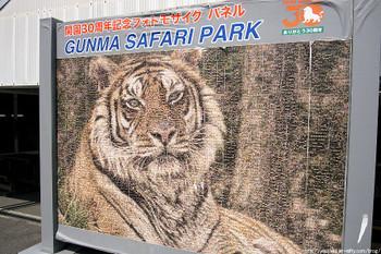 12_0406_safari_02